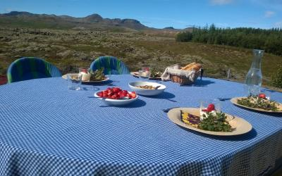 Why Dining With The Icelanders?