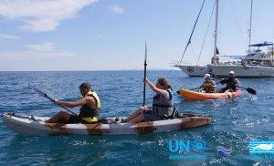 Υλοποίηση σημαντικής έρευνας σε διάφορες περιοχές του Αιγαίου, σε συνεργασία με το Περιφερειακό Κέντρο Δράσης των Ηνωμένων Εθνών για τη Μεσόγειο