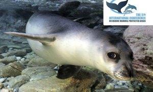 Το μεγαλύτερο συνέδριο για τα θαλάσσια θηλαστικά και τις Θαλάσσιες Προστατευόμενες Περιοχές έρχεται για πρώτη φορά στην Ελλάδα
