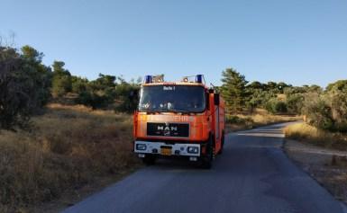 Πυροσβεστικό Σώμα Εθελοντών Ν. Βουτζά -Προβαλίνθου στην χθεσινή πυρκαγιά στην Αρτέμιδα