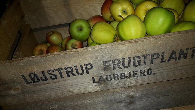 logstrupfrugtplantage