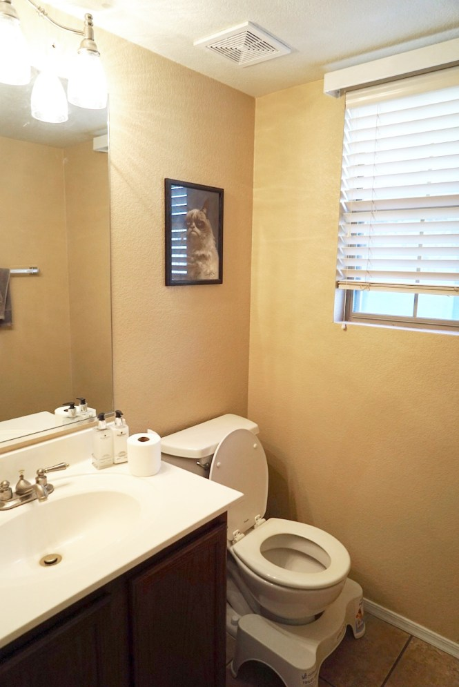 Guest Bathroom Makeover - Before