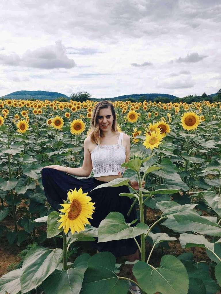 hellolife-blog-nyar-napraforgok-szabadsag