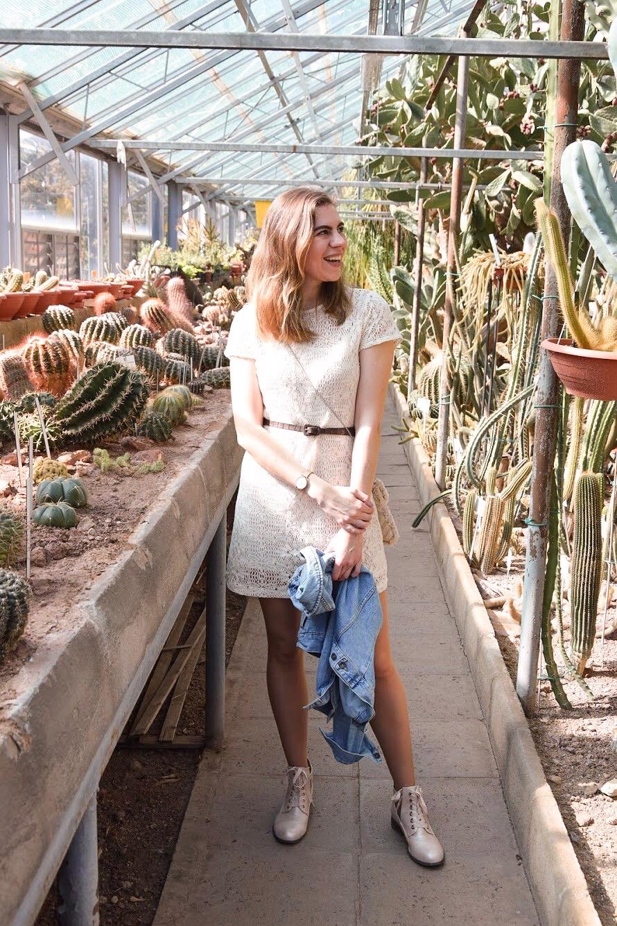 hellolife-blog-palma-kaktusz-lookbook-tavasz
