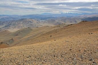Tageswanderung durch hügelige Landschaft von Ölgii