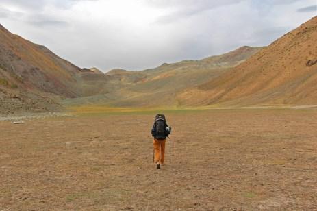 Wanderer in brauner Landschaft