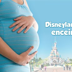 Disneyland Paris enceinte