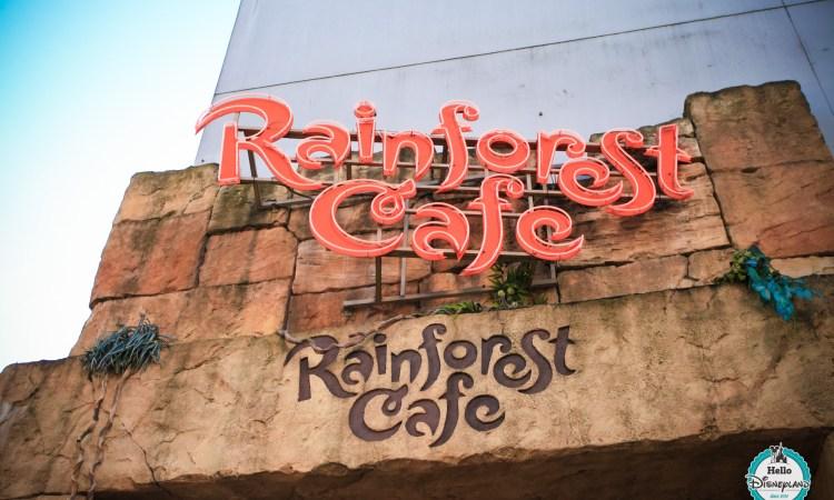 Rainforest Cafe Shop