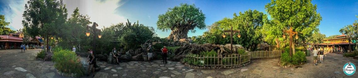 Animal Kingdom Panorama - Walt Disney World-1
