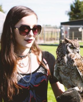 Crazy, Stupid Owl