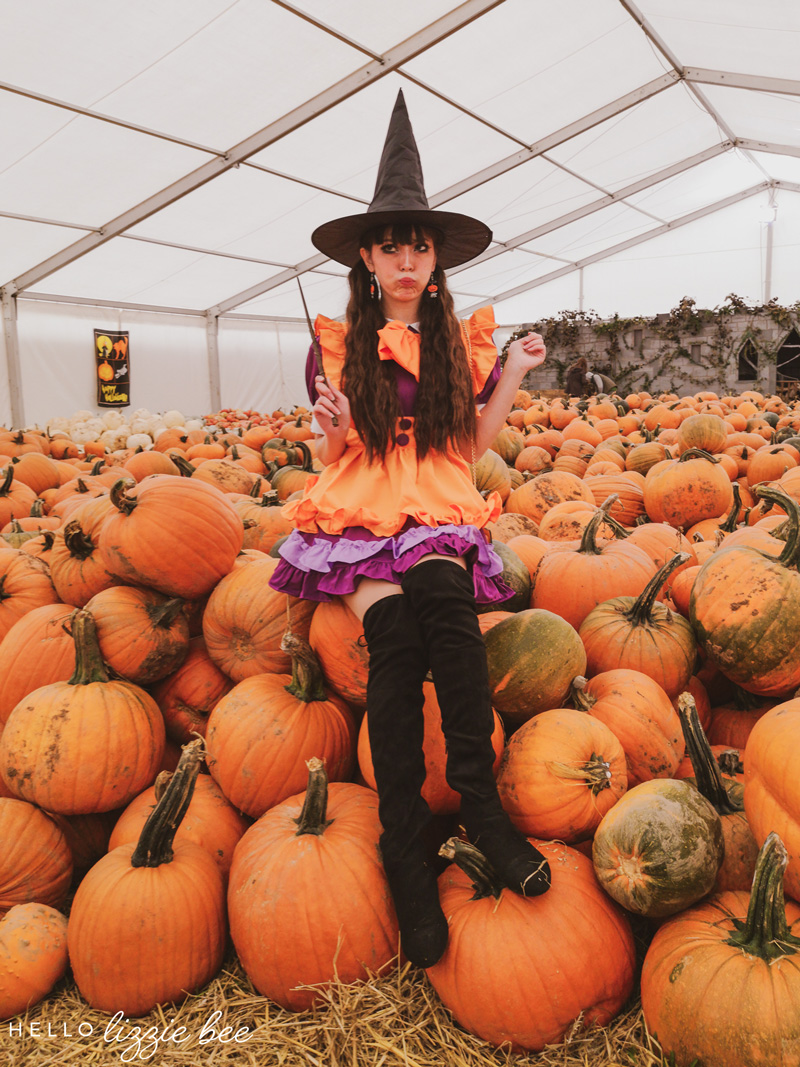 Cute Pumpkin Witch at Pumpkins R Us