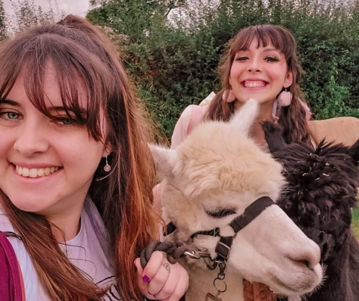 LuluBee date ♡ A walk with… An alpaca?!