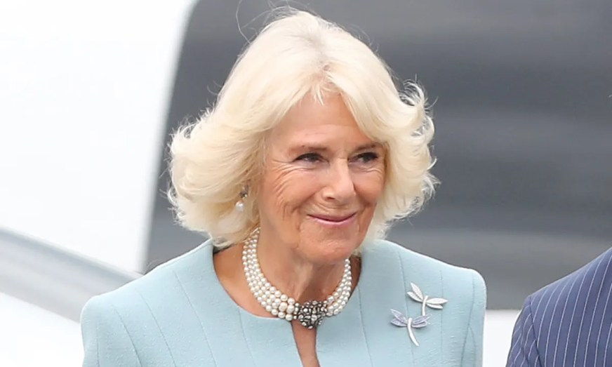 Camilla Parker-Bowles stuns in powder blue suit on tour in ...