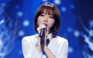 penyanyi korea punch