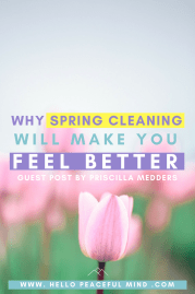 Why Spring Cleaning Will Make You Feel Better