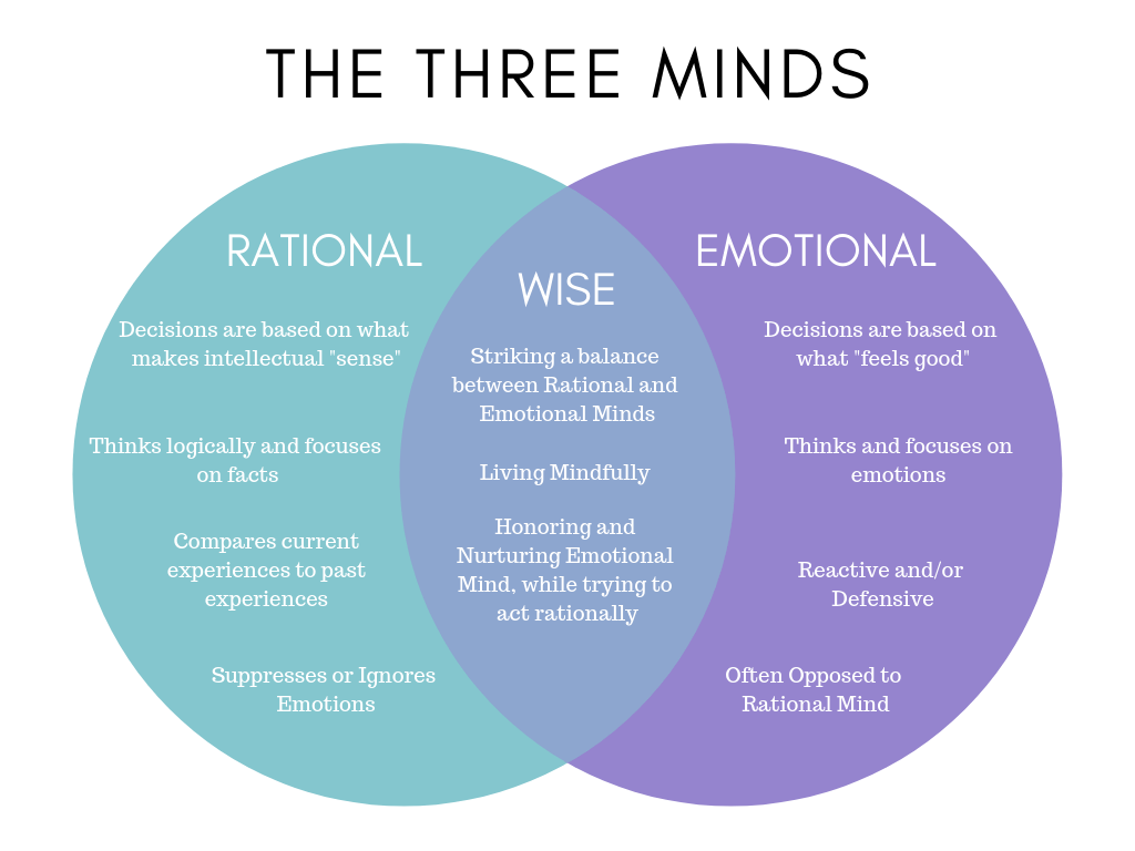 The 3 Minds Emotional Rational And Wise