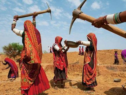 Rajasthan MNREGA , MNREGA, nrega Rajasthan Contract Workers, Unskilled Workers, NREGA Works , Ashok Gehlot, Rajasthan , Labour in Rajasthan, NREGA,