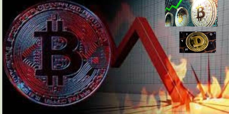 Cryptocurrency market drop Bitcoin, ethereum doge post largest one-day drop know more details