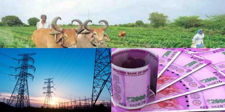 CM, Ashok Gehlot, agricultural consumers, Rajasthan, electricity , Rajasthan Government,