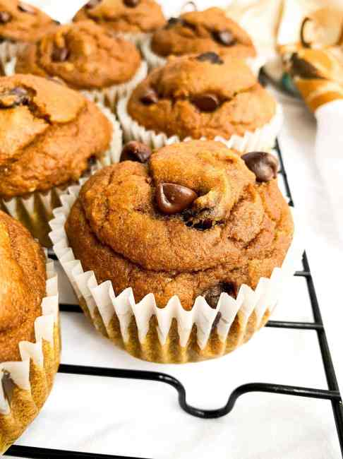 Easy, Healthy Pumpkin Muffins with Chocolate Chips