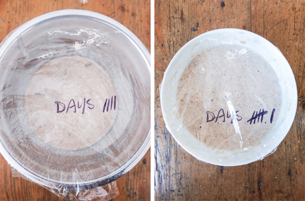 Make your own sourdough starter | Hello Victoria