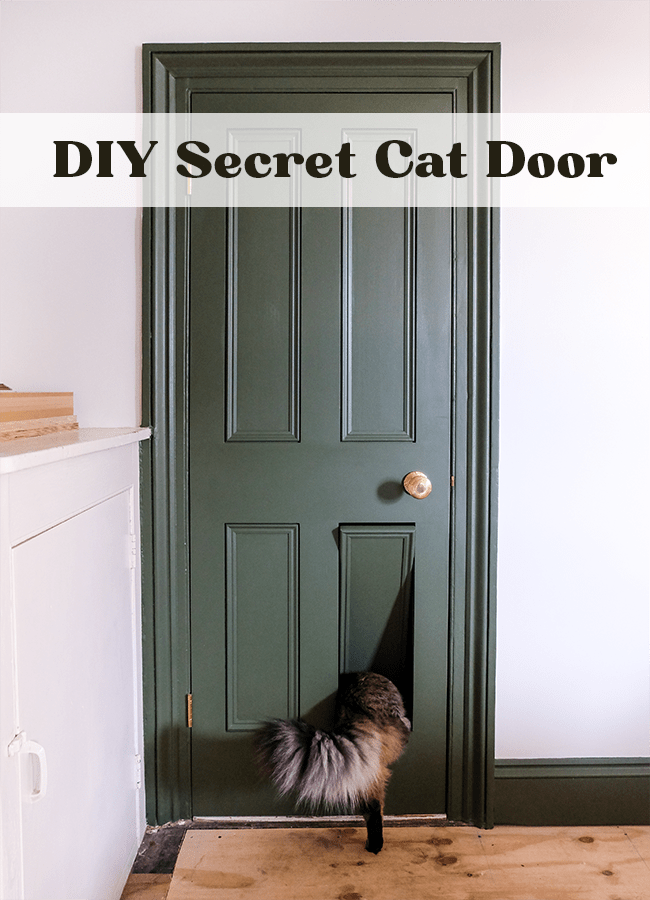 DIY secret cat door | Hello Victoria