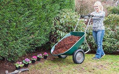 Buy a garden cart or a wheelbarrow? The answer was yes.