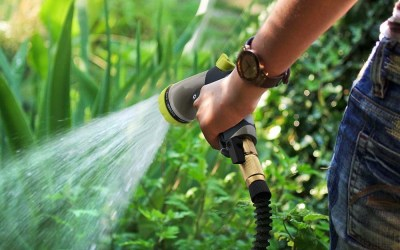 Are expandable garden hoses worth it? Easy. [UPDATED]