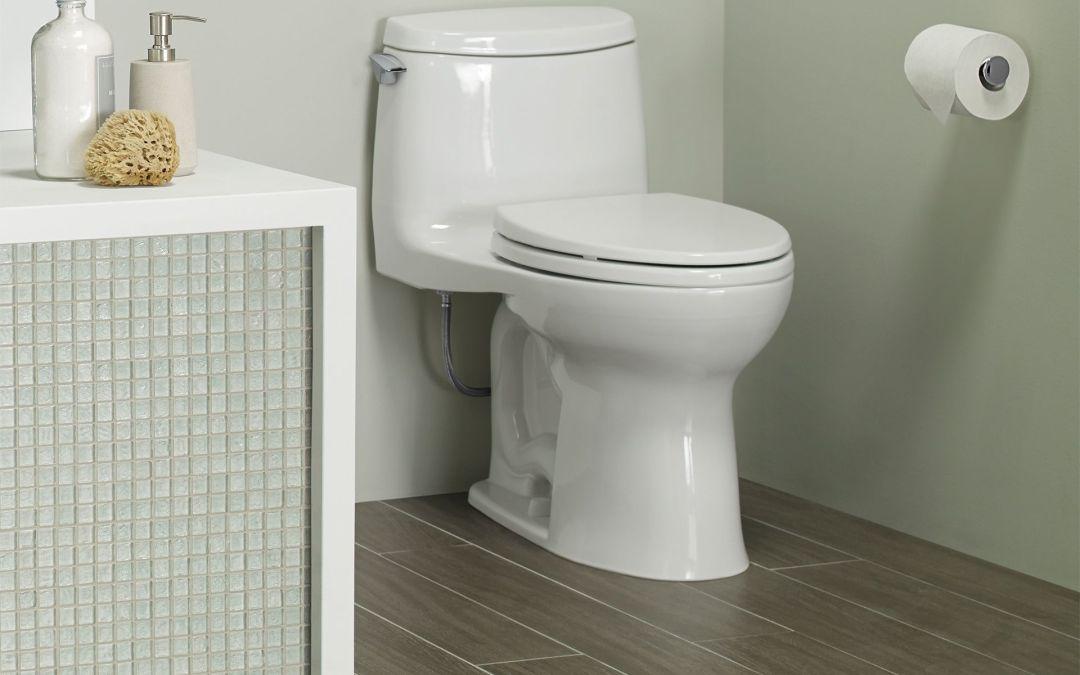 1-piece toilet beats 2-piece, hands down.