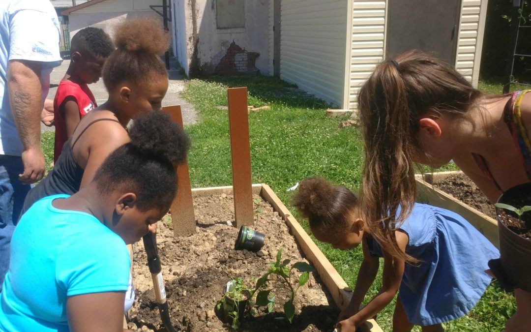 Our Garden Programs 'teach children and teens how to provide for themselves
