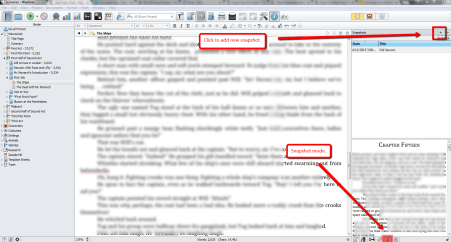 Writing_Process_Scrivener_Snapshots