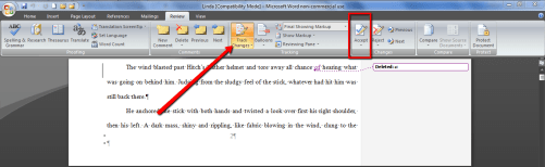 Use Track Changes Accept Button When Figuring Out How to Organize Your Novel's Edits