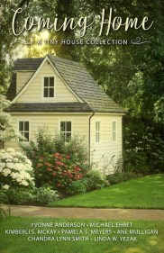 Tiny House Linda Yezak Book Bundles
