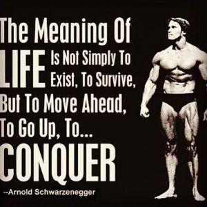 body transformation conquer