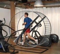 5 reasons why you're not getting results - hamster wheel