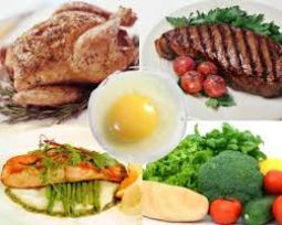 anabolic diet - protein