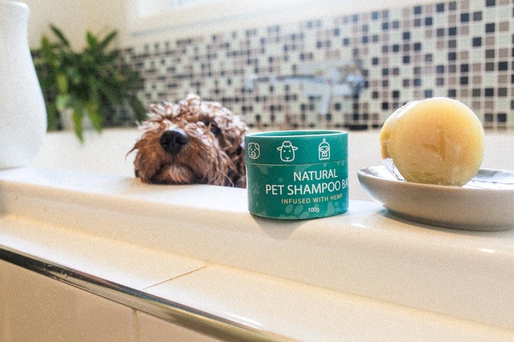 Benefits-Of-Shampoo-Bar