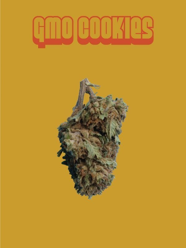GMO Cookies CBD flowers