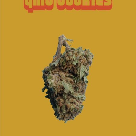 GMO Cookies CBD flowers