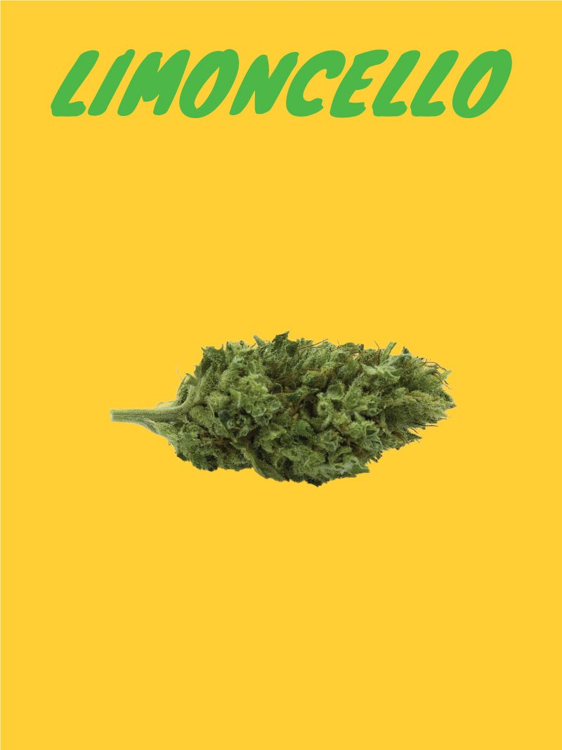 limoncello CBD flower