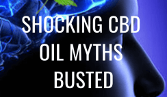 5 shocking cbd oil myths busted