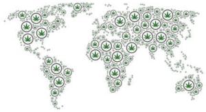 world map marijuana