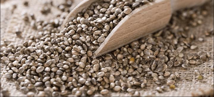 hemp seeds with wooden spoon