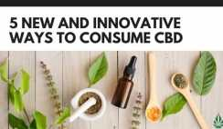 5 new and innovative ways to consume cbd banner