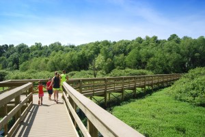 A family walking among the blue skies and green foliage on the Boardwalk Trail at Audubon State Park.