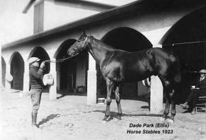 A black and white photo from 1923 of a stable mate posing with a thoroughbred horse in the stables at Ellis Park (formerly Dade Park)