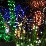 Henderson Holiday Lights 2015