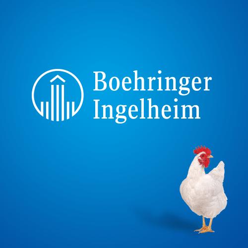 Boehringer Ingelheim – Poultry Division
