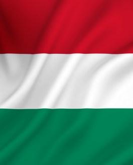 Vogels spotten in Hongarije