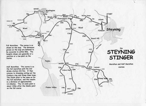 Stinger Map